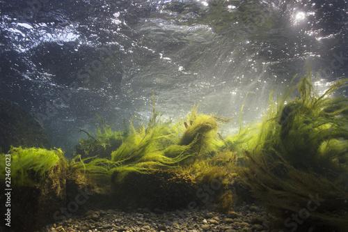 River underwater rocks on a...