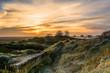 Lincolnshire coastal marsh in winter