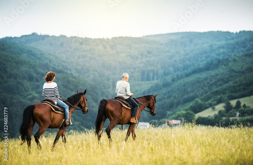 Obraz na plátně A senior couple riding horses in nature.