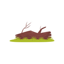 Old Tree Trunk, Element Of Tropical Jungle Forest Landscape Vector Illustration On A White Background