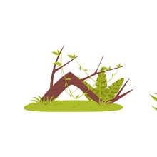 Trunk Of Old Broken Tree And Tropical Plants, Element Of Jungle Landscape Vector Illustration On A White Background