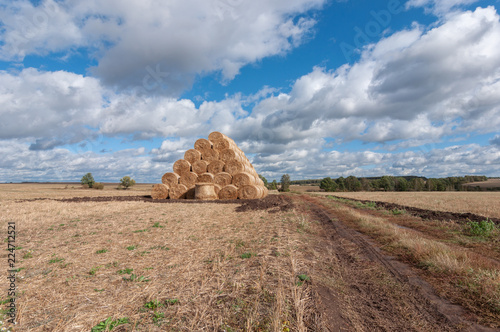 beautiful autumn landscape with a view of straw bales in a field