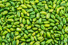 Lot Of Green Pistachio Nuts. Food Background.
