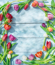 Colorful Tulips On Blue Wooden Table In Spring Sunlights.