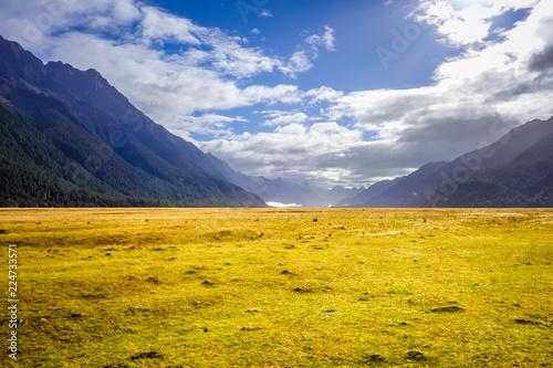 Foto op Plexiglas Oceanië Fiordland national park, New Zealand