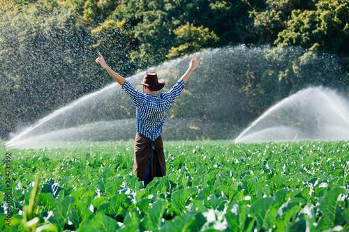 farmer man pray sun worker check plantation technology hat sprinkler system wate Wallpaper Mural