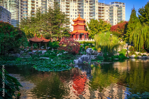 fototapeta na lodówkę Chinese Garden of Friendship in Sydney, Australia
