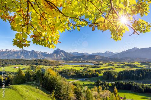 Montage in der Fensternische Gelb Herbst Landschaft im Allgäu mit Berge der Alpen