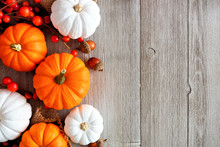 Autumn Side Border Of Orange And White Pumpkins And Berries On A Light Gray Wood Background With Copy Space