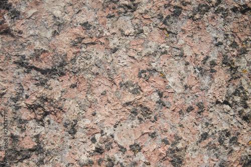 In de dag Stenen the homogeneous texture of the stone
