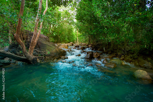 Fototapety, obrazy: Forest, River, Spring - Flowing Water, Water, Woodland