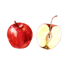 Red Apple And Apple Cut, Watercolor Illustration.