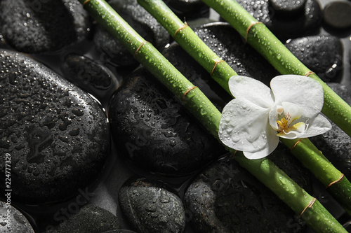 Bamboo branches, orchid and spa stones in water. Space for text