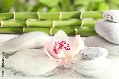 Orchid with spa stones and bamboo branches in water
