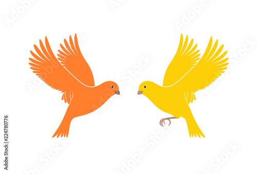 Canary logo. Isolated canary on white background. Bird Canvas Print