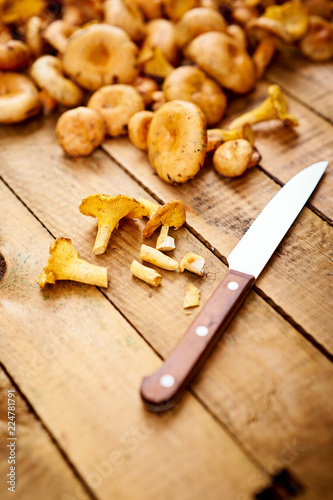 Fotografie, Obraz  delicious fresh lactarius mushrooms straight from the forest and a knife on an o