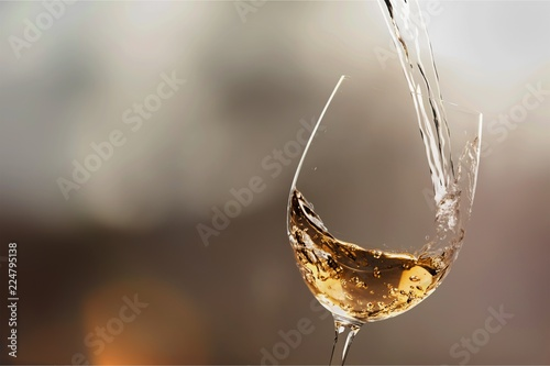 Canvas Prints Wine White wine splash isolated on background