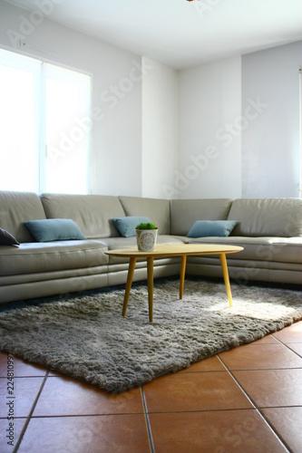 Canapé Gris En Cuir Rt Table Basse,salon Moderne