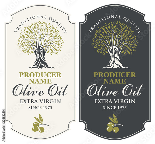 Fototapeta Vector set of two labels for extra virgin olive oil with handwritten calligraphic inscription, olive tree and olive sprig in figured frame in retro style. obraz