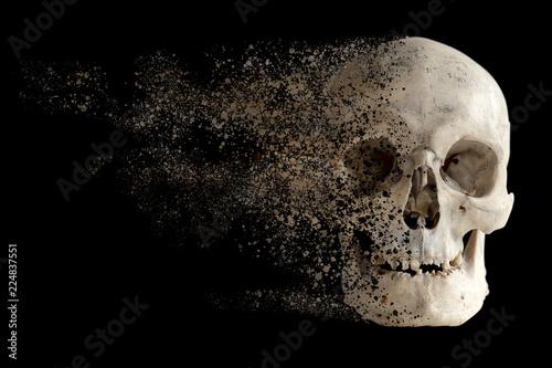 Printed kitchen splashbacks Watercolor skull The effect of the destruction of the sandstorm of the human skull