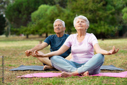 Obraz Senior couple doing yoga - fototapety do salonu