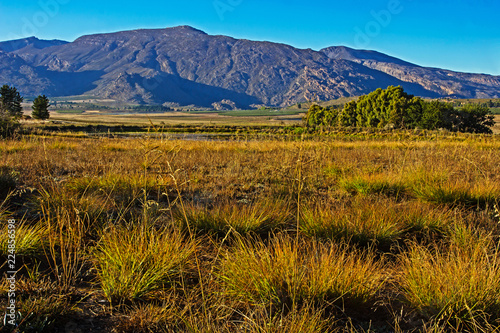 Landscape of grassland with Hex River Mountains