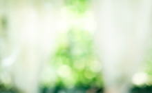 Blurred  Background Of White Curtain With Window Against Green Nature Abstract Bokeh. Garden Background. Outside View In Morning