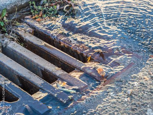 Plakat Gulli w powodzi