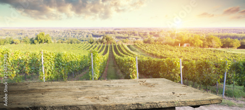 Deurstickers Toscane Ripe wine grapes on vines in Tuscany, Italy. Picturesque wine farm, vineyard. Sunset warm light