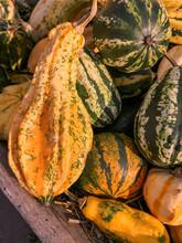 Decorative Pumpkins Or Ornamental Fruit