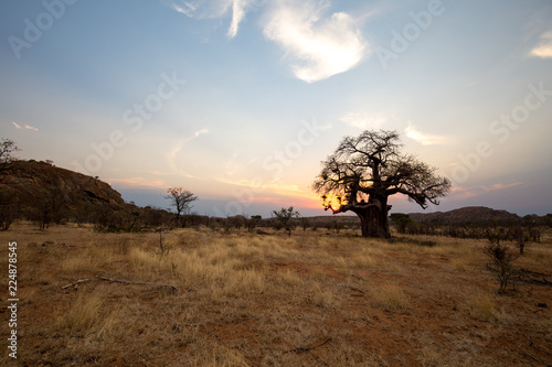 Staande foto Bleke violet landscape of africa in the sunset