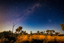 Starry Night Sky Over Outback ...