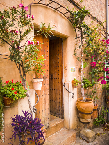A typical Mediterranean house with a front door decoration of flower pots with c Wallpaper Mural