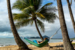 Woman laying in hammock between palm trees