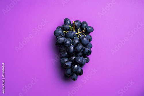 Dark blue grapes Fototapeta