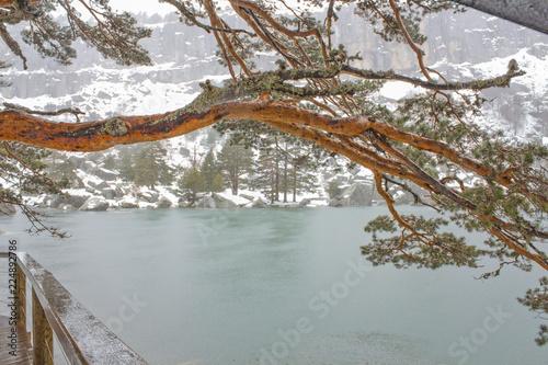 Snowy landscape of the Black Lagoon, in Soria, Spain