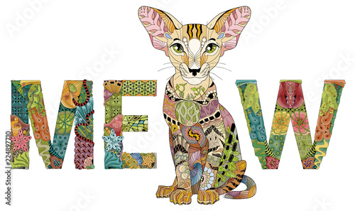 Fototapeta Word MEOW with a drawing of a cat