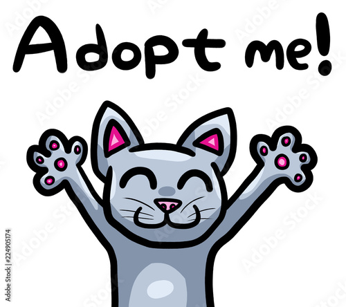 Funny Grey Cat Wanting To Be Adopted Wallpaper Mural