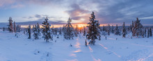 Snow Covered Winter Landscape ...