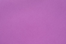 Purple Paper Texture Background. Abstract Monochrome Layer. Empty Space Concept.