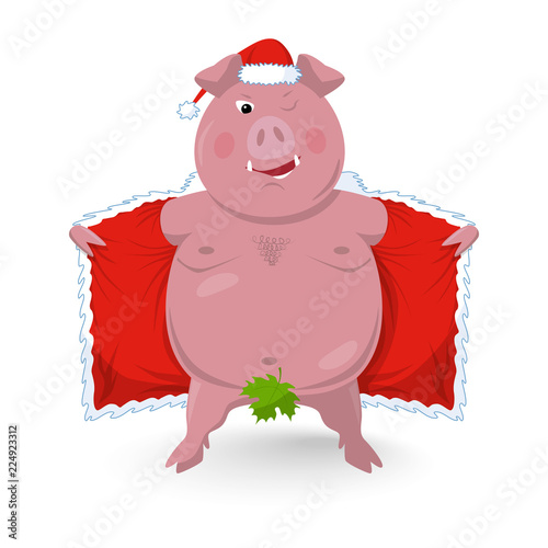 Photo  A funny naked boar in santa's clothes