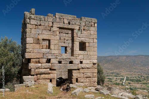 Spoed Foto op Canvas Oude gebouw Ruins of the ancient town Alinda, Turkey