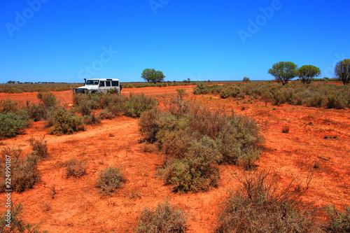 Foto op Plexiglas Oceanië Driving in the bush