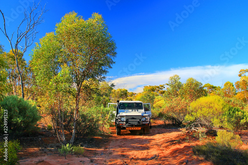 Driving in the bush