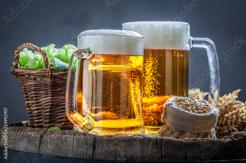 Tuinposter Bier / Cider Two fresh light beers with foam, wheat and hops
