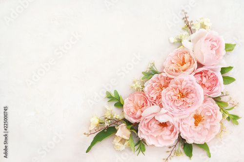 Fotografie, Obraz Summer blossoming delicate rose on blooming flowers festive background, pastel a