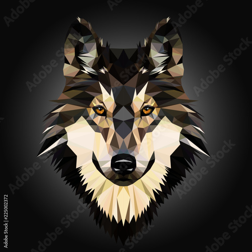 Canvas Print Low poly triangular dog wild wolf face on grey background, symmetrical vector illustration isolated