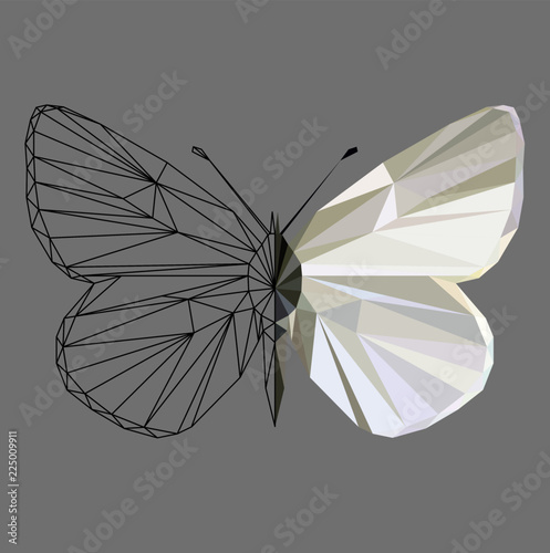 Photo Butterfly polygonal low poly wireframe isolated on grey background,vector illustration