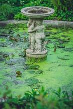 Small Garden Fountain In Spring