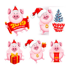 Cartoon Pigs Set